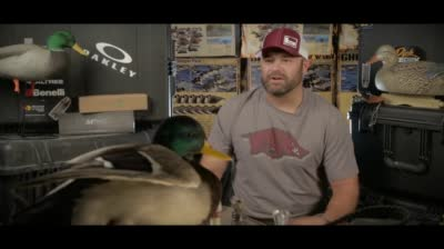 Episode 4: The Fowl Life with Chad Belding Sneak Peek -
